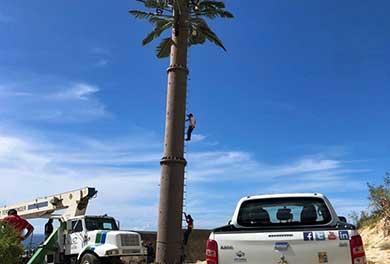 Desmantela antena Gobierno de Los Cabos