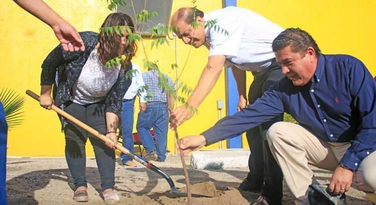 Inicia UABCS campaña de reforestación