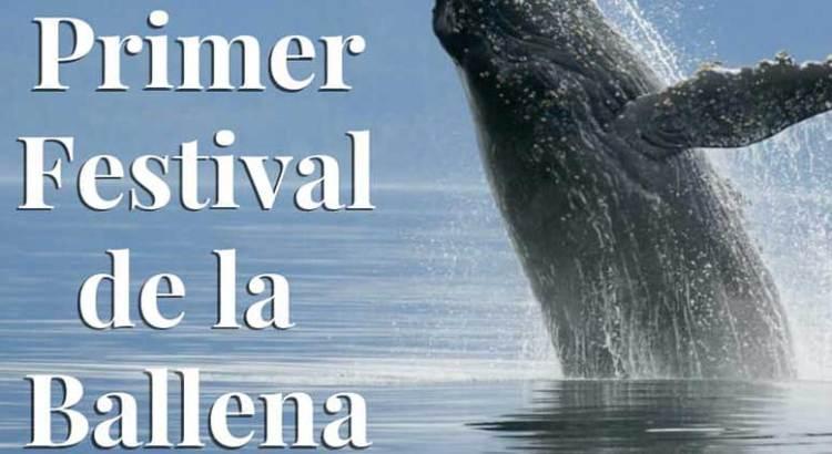 Invitan al Festival de la Ballena en Puerto Chale