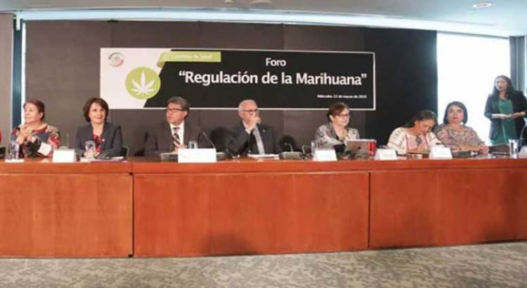 Abre Senado proceso para despenalizar la mariguana