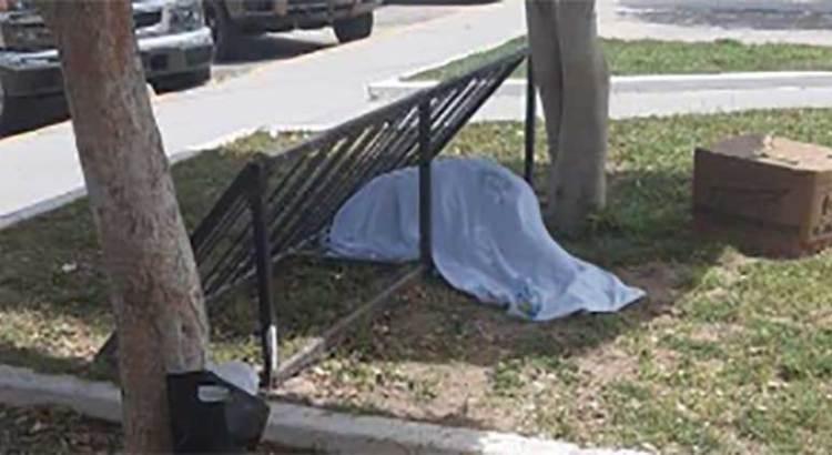 Encuentran cuerpo bajo la banca de un parque