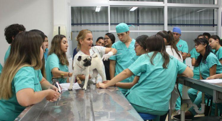 Imparten taller a estudiantes de Veterinaria en la UABCS