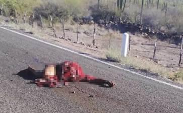 Encuentran cuerpo descuartizado en la carretera