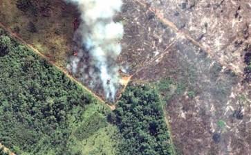 Bolsonaro: sin fondos para frenar incendios