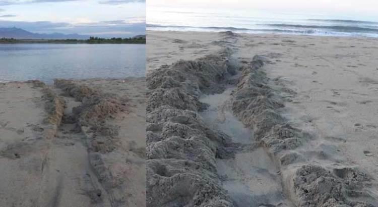 Volvieron abrir la bocana del Estero de San José