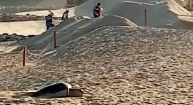 A pesar del Waldorf Astoria desova tortuga laúd en playa cabeña