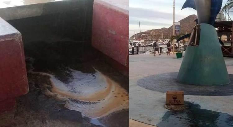 Se recrudece el derrame de aguas negras en la marina de CSL
