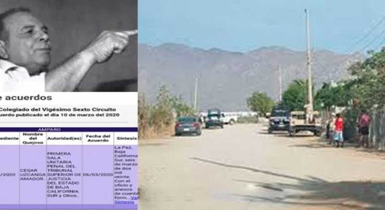 En La Ballena, El Tumor (PAN-PRI-PRD) está temblando