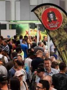 México, destino de inversión para empresas de cannabis