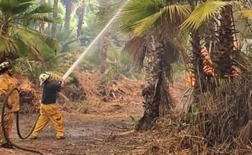 Controlado incendio en Todos Santos