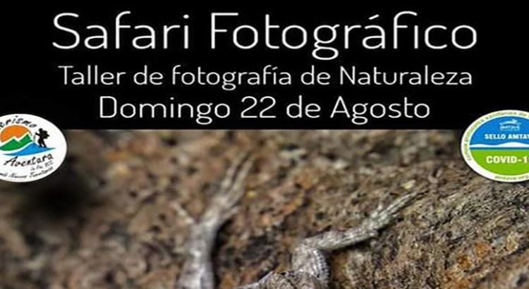 Intégrate al Safari fotográfico