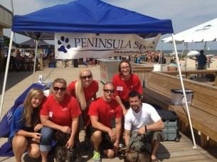 volunteersparadise