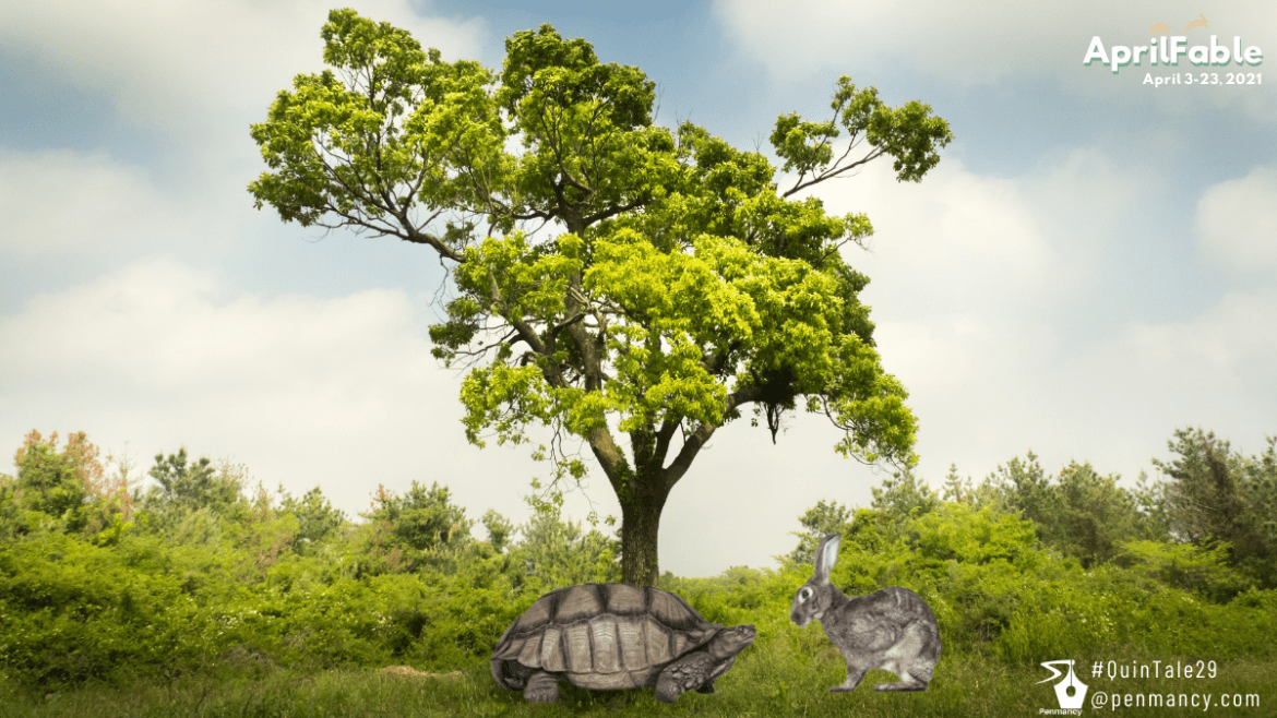 The Hare and the Tortoise – 2.0