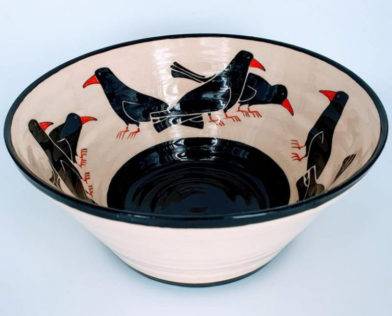 Cornish chough Collections