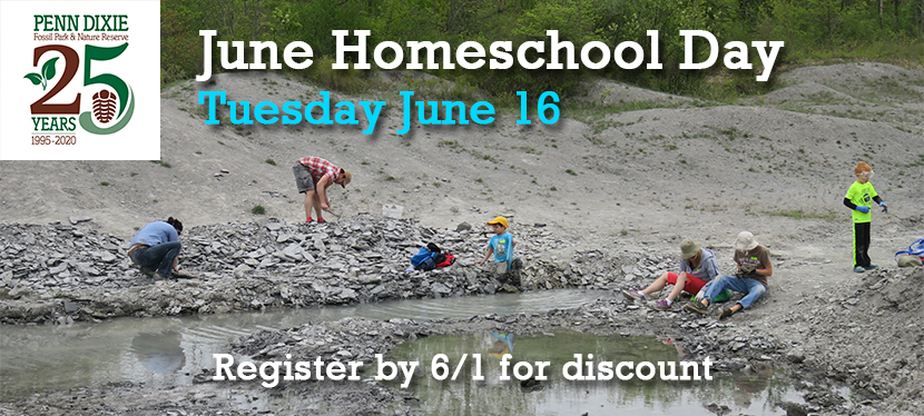 June Homeschool Day