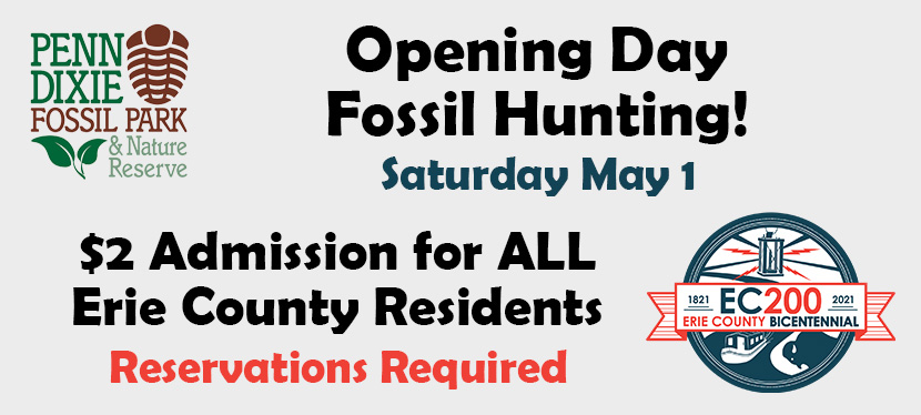 Opening Day Fossil Hunting