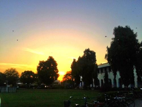 BITS Pilani Campus, Pilani, India, 2014