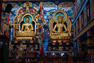 Inside the Namdroling Monastery