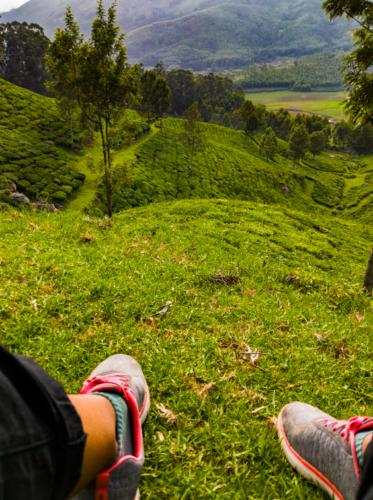 View of Kanan Devan Hills Tea Estate