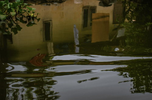 Reflection in the Alleppey backwaters