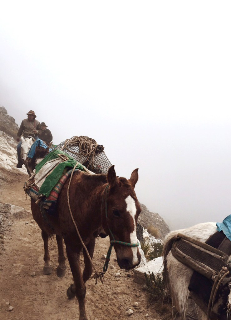 Horsemen passing us on the trail