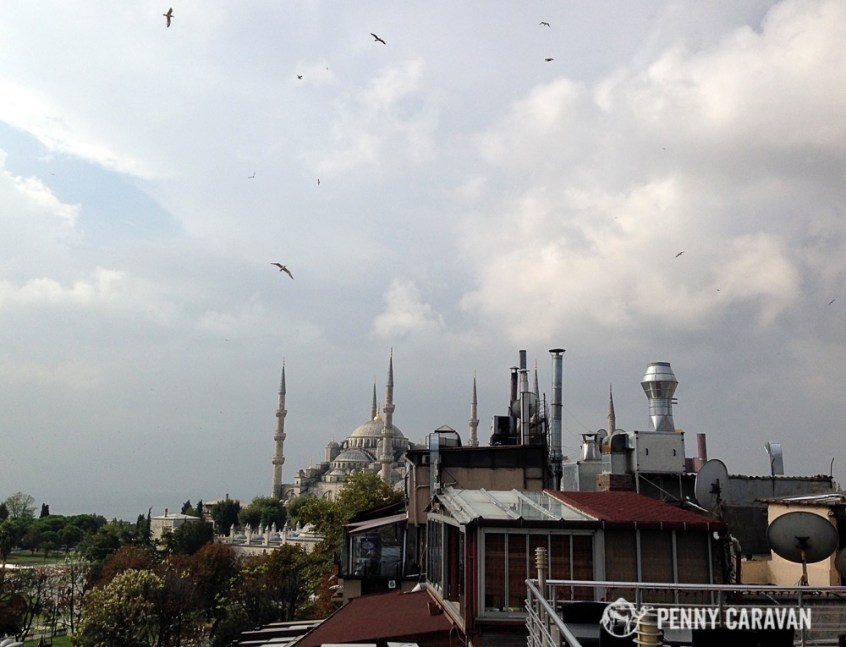View of the Blue Mosque from the terrace.