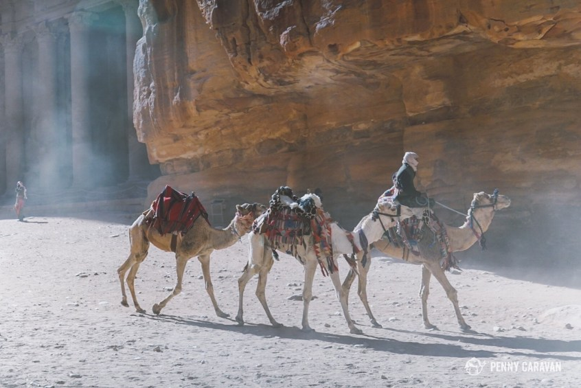 Camels and donkeys are available for hire around the city.