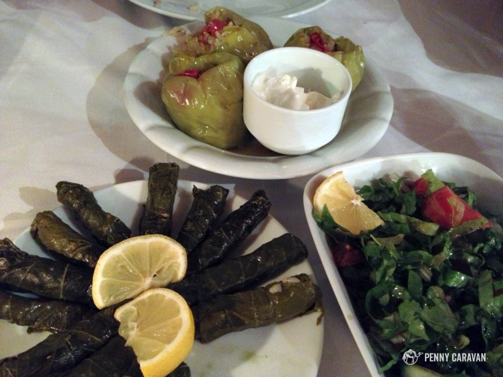 Different varieties of Dolma, and Coban Salad on the right.