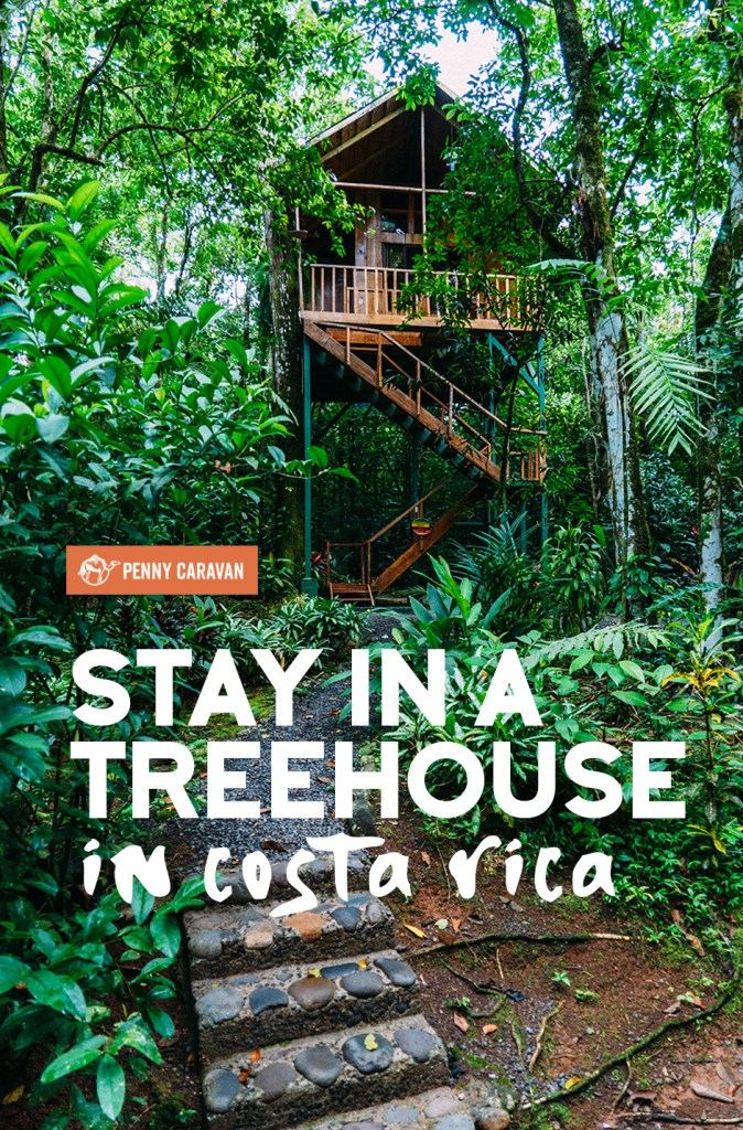 Treehouses Hotel Costa Rica | Penny Caravan
