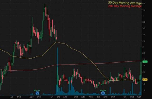 top penny stocks to watch Soleno Therapeutics Inc. (SLNO stock chart)