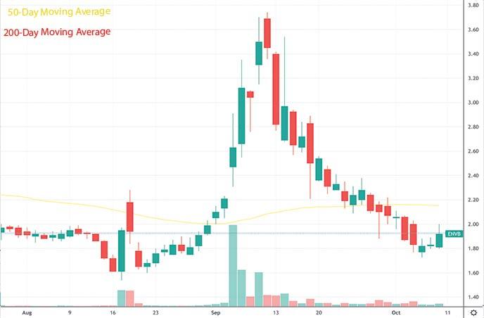 best penny stocks to buy this week Enveric Biosciences ENVB stock chart