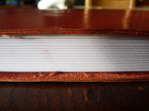 Monsieur fountain pen notebook review