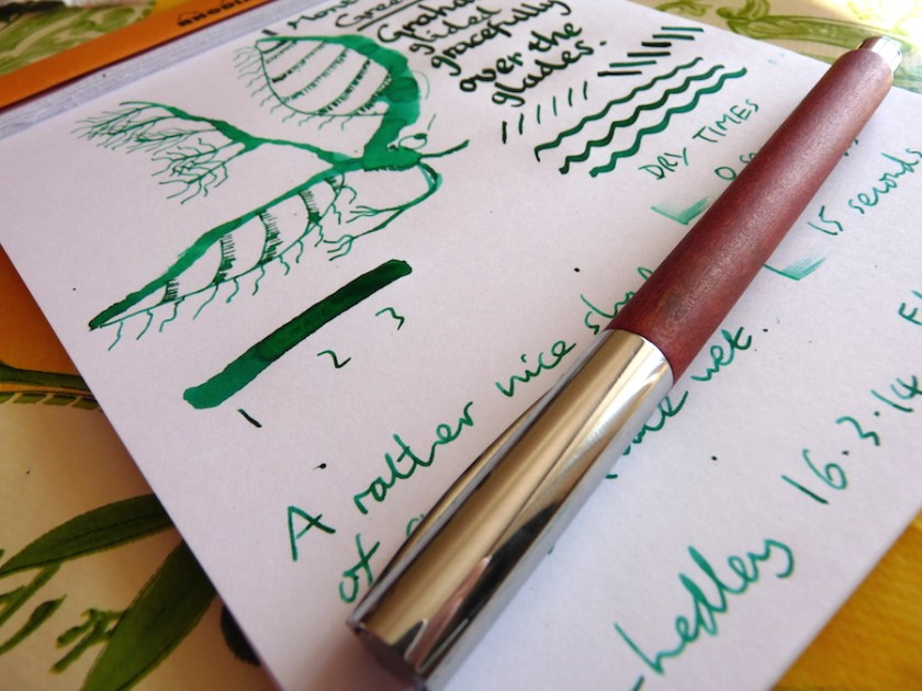 Monterverde Green ink review