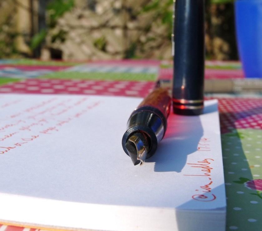 Serwex 101 F fountain pen nib