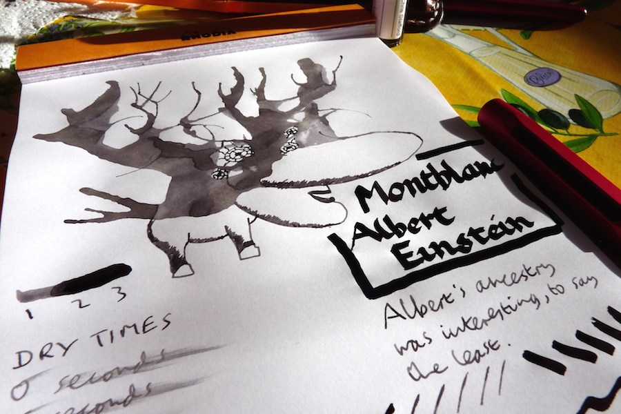 Montblanc Albert Einstein ink review