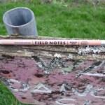 Field Notes No2 pencil branding