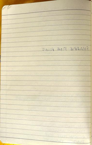 Papernotes notebook ink tests back