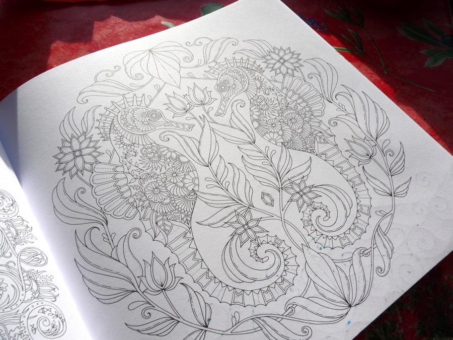 Johanna Basford Lost Ocean Colouring Book Review Pens Paper Pencils