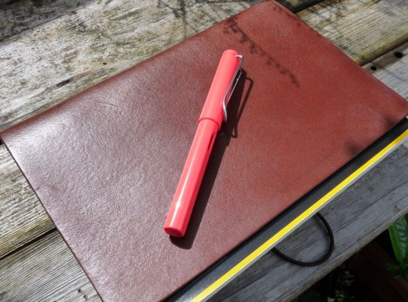 Lamy Safari review