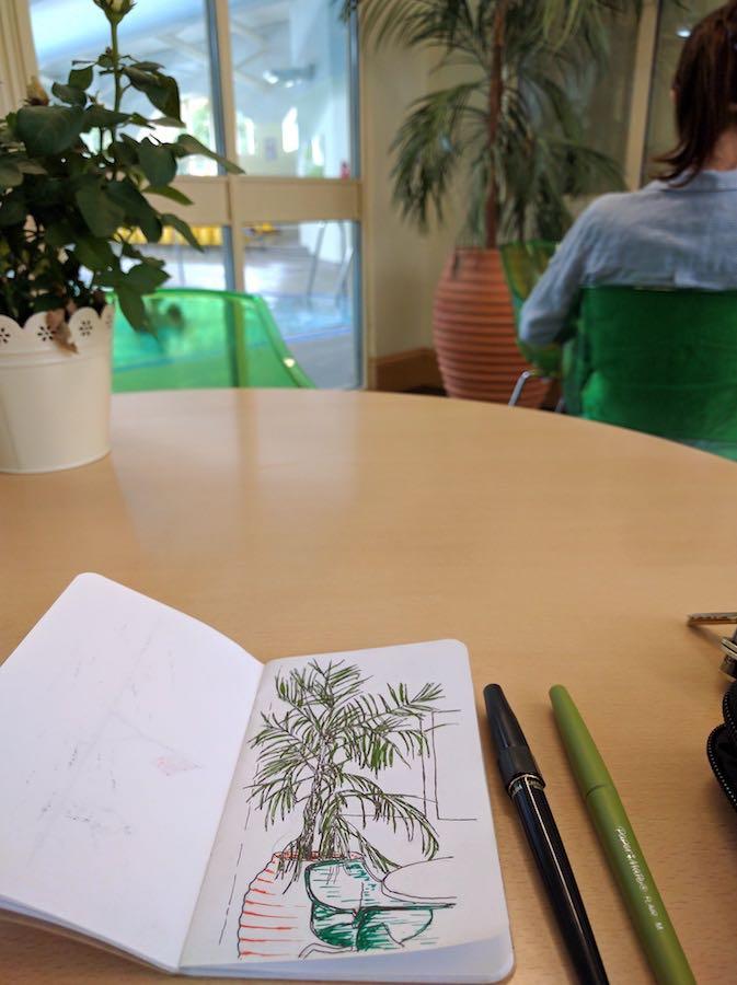 pot-plant-sketch