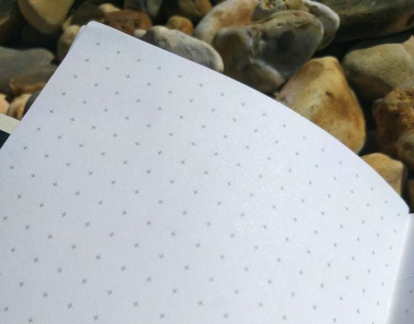 Back Pocket Notebook grid