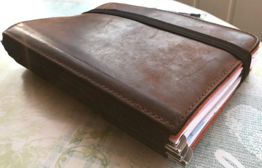 Roterfaden Taschenbegleiter cover