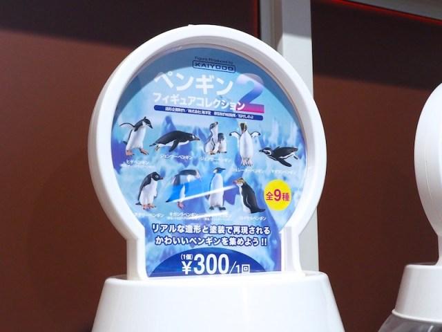 越前松島水族館 海洋堂ガチャガチャ