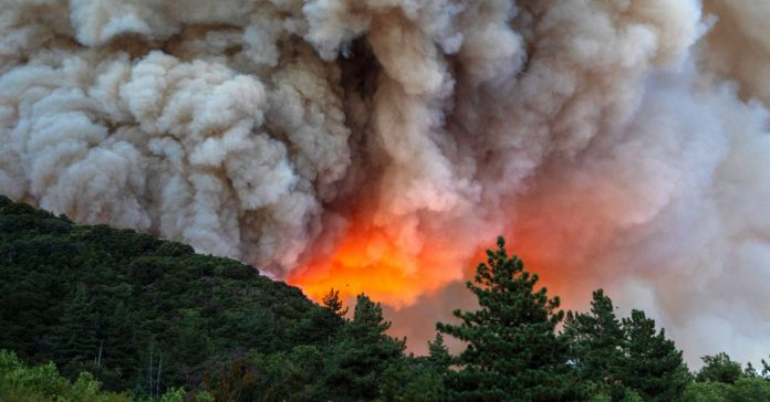 How Weird, Bouncy Cell Signals Can Help Track Wildfire Smoke