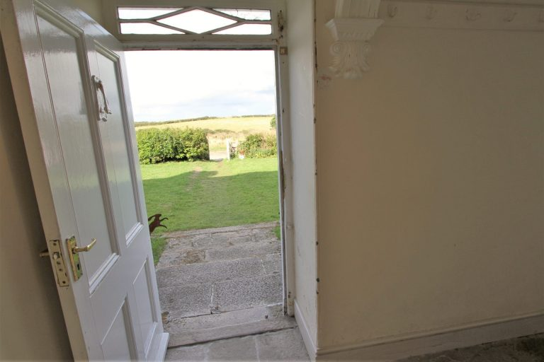 View onto front garden