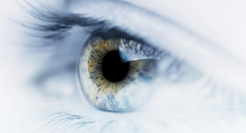 A compreensão de um olhar