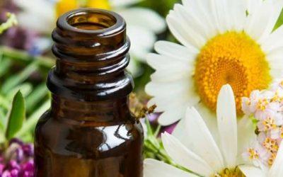 Flores que curam: Uma abordagem sobre a terapia floral
