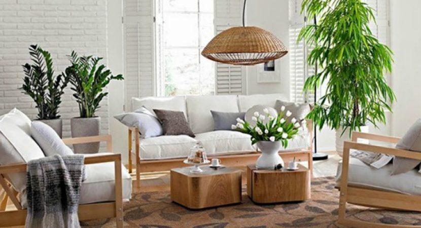 Cultivando boas energias para seu lar