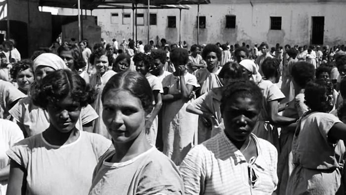 Livro - Holocausto brasileiro Genocídio 60 mil mortos no maior hospício do Brasil