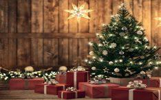 Árvore de Natal... muito mais do que uma tradição natalina